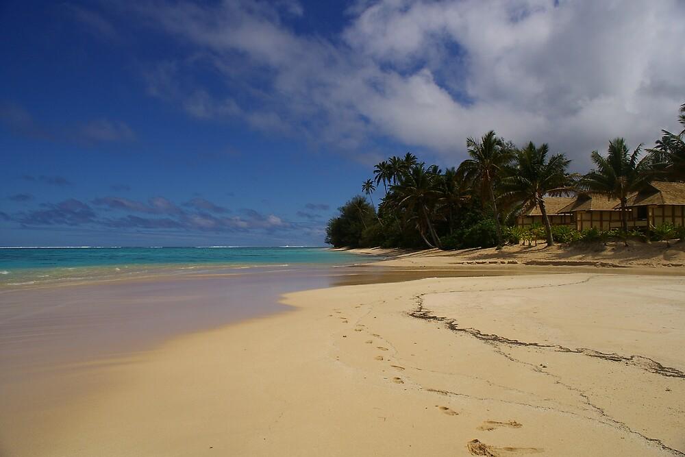 Palm Grove beach by Ozmoe