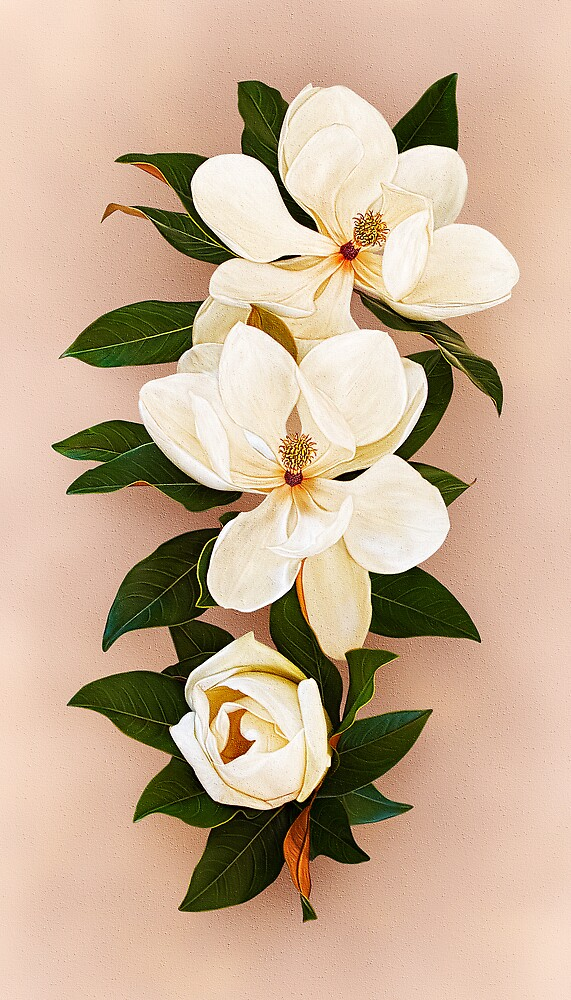 Painted Magnolias by Jenni Horsnell