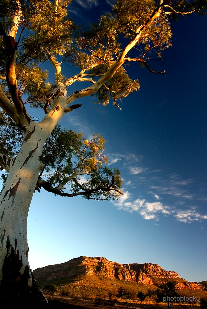 Flinders Ranges, SA - Australia by photoblogku
