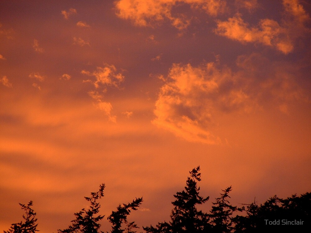 Fire in the sky by Todd Sinclair