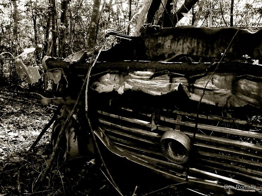 Bush Wreck by Ben Romalis