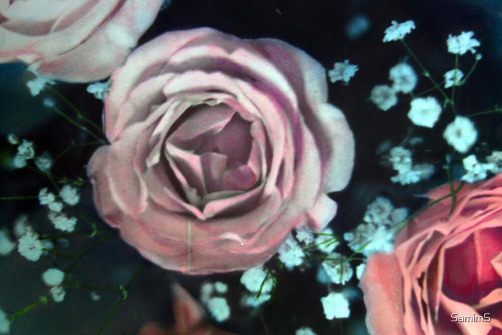 Pink Roses by SamimS