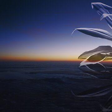 Sky Above by kringmurphy