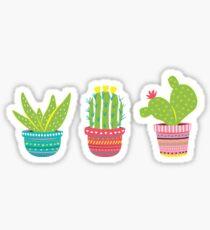 Boho Cactus Sticker
