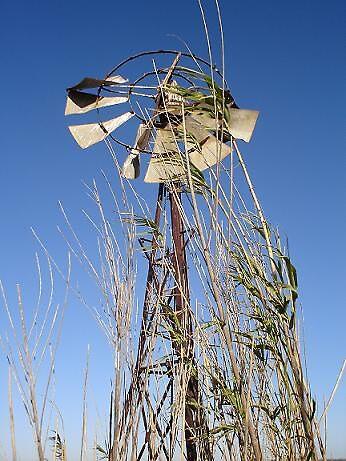 .... windmill by elizabethrose05