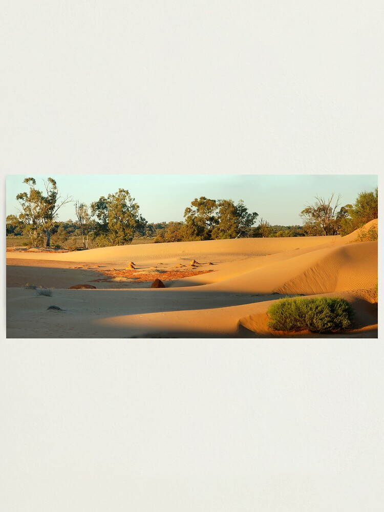 Alternate view of Perry sand dunes Photographic Print