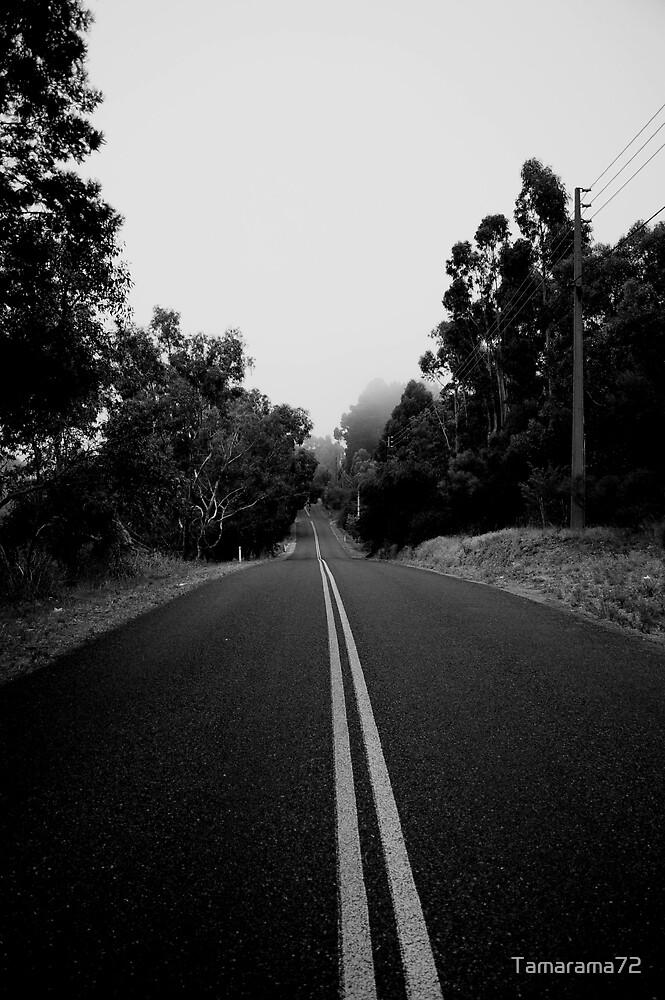 The Long Road  by Tamarama72