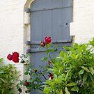 The Blue Door by AnnDixon