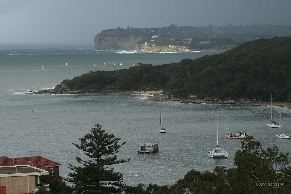 Fair light, on Watsons Bay, across the bay, from Fairlight.  by Ozcloggie