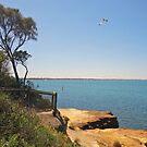 Table Rock  -  Beaumaris Bay  -  Victoria  -  Australia by bayside2