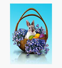 Easter Bunny Basket Photographic Print