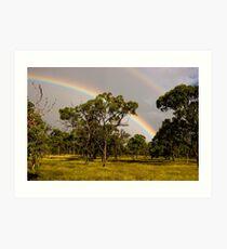 Bush Rainbow Art Print