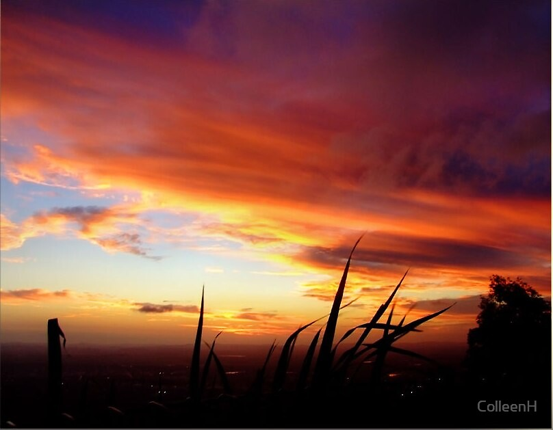 Mt Archer Sunset by ColleenH