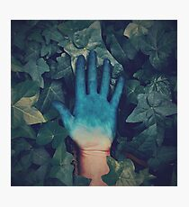Blue Ivy Photographic Print