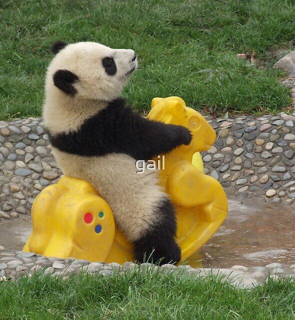baby panda by gail