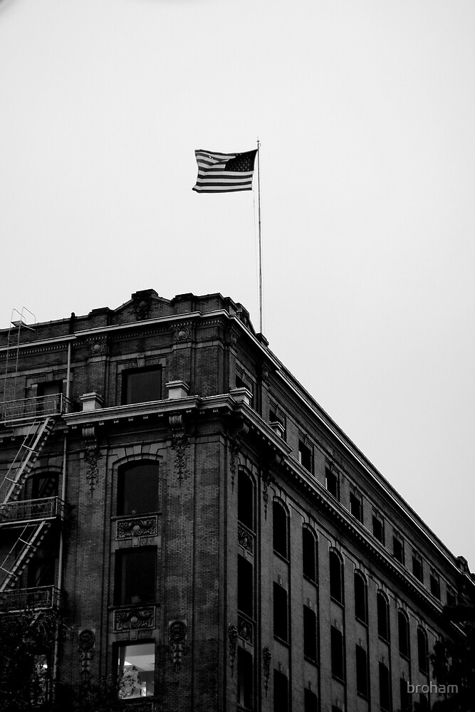 U.S. Flag, Black and White, Building  by broham