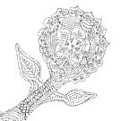 Dotted Flower by KazM
