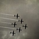 The Roulettes by Shane Viper