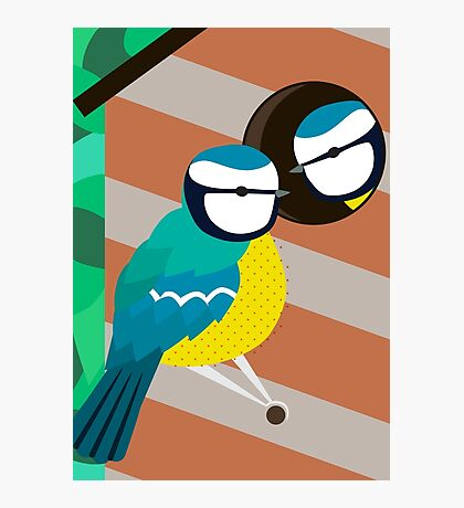 Blue Tits in Nesting Box Illustration Photographic Print