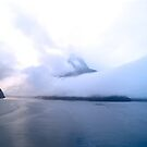 Top of the Sound ~ Milford Sound, New Zealand by Jan Stead JEMproductions