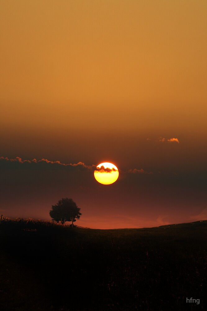 Sunrise with a lone tree by hfng
