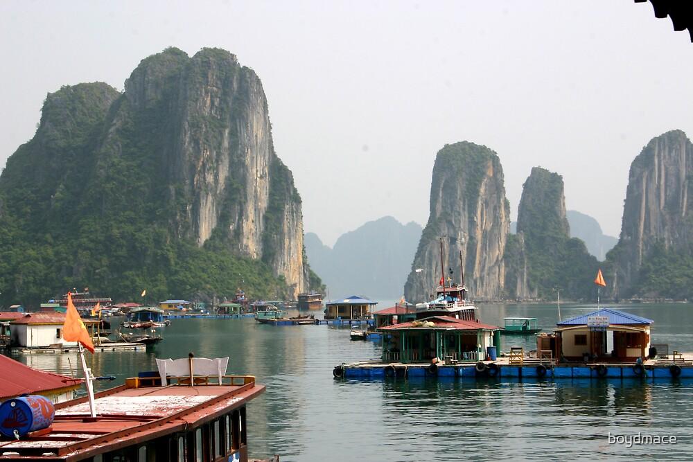 Halong Bay Vietnam by boydmace