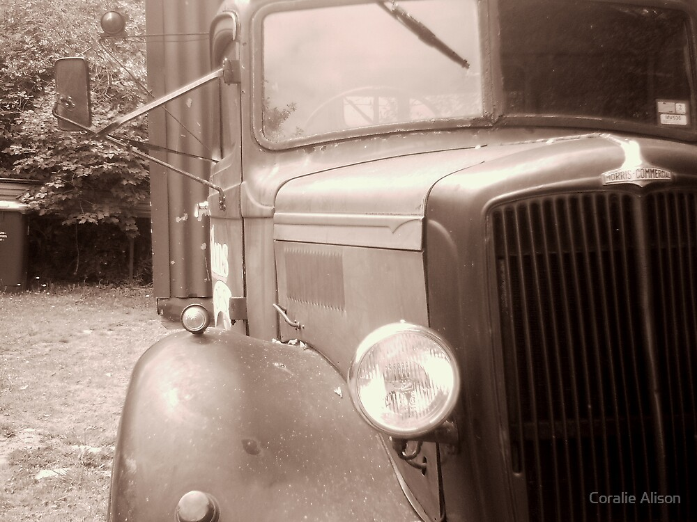 Vintage by Coralie Alison