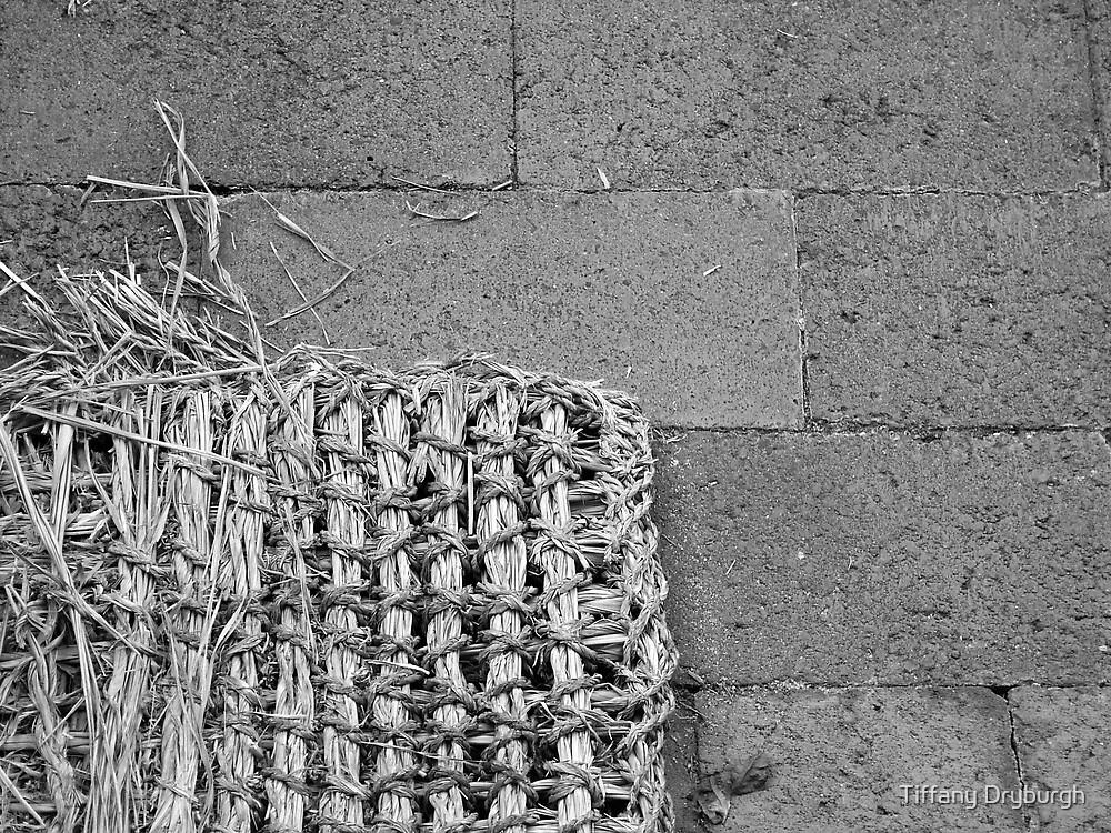 Doormat by Tiffany Dryburgh