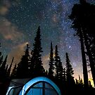 Camping Star Light Star Bright by Bo Insogna