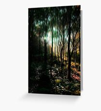 Trees in an Enchanted Forest Greeting Card