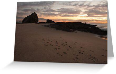 Currumbin Sunrise by Brett Habener
