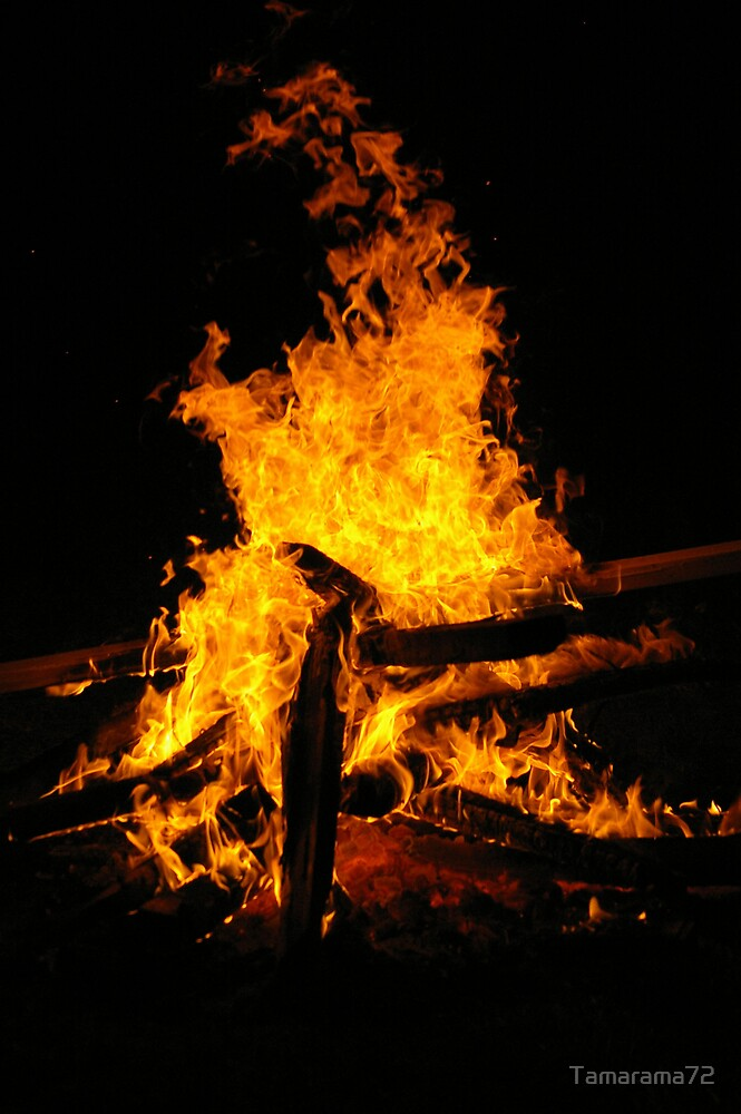 Burn baby Burn  by Tamarama72