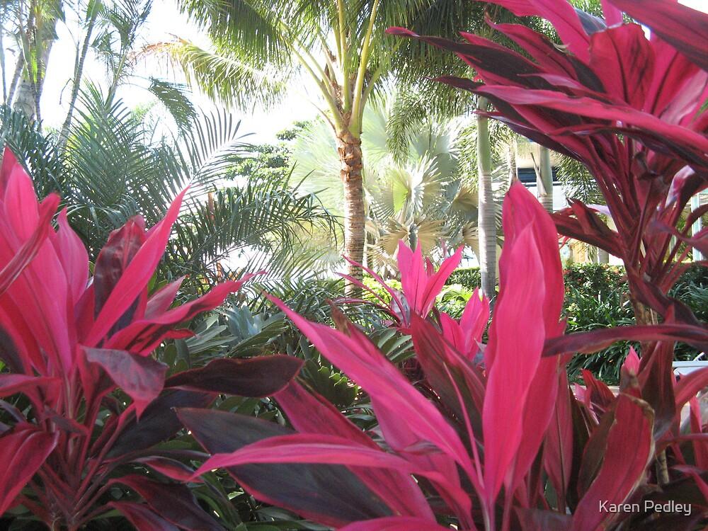 Plants from Daydream Island by Karen Pedley