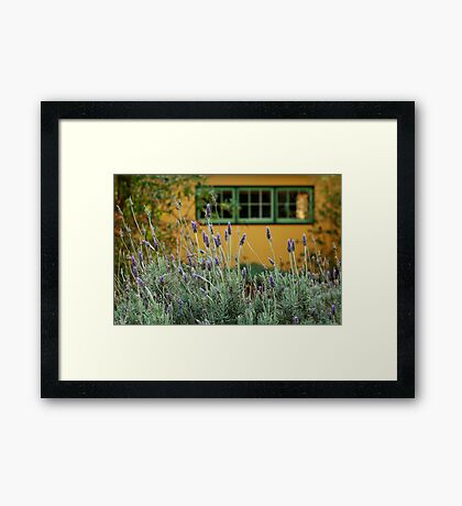 Lavender Cottage Framed Print