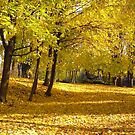 Leaves of Gold by Shulie1
