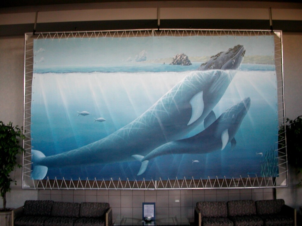 California Grey Whale Mural Original Artist No other copies by dianemarie777