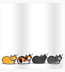 Four cats notecard Poster