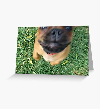 Leap Greeting Card