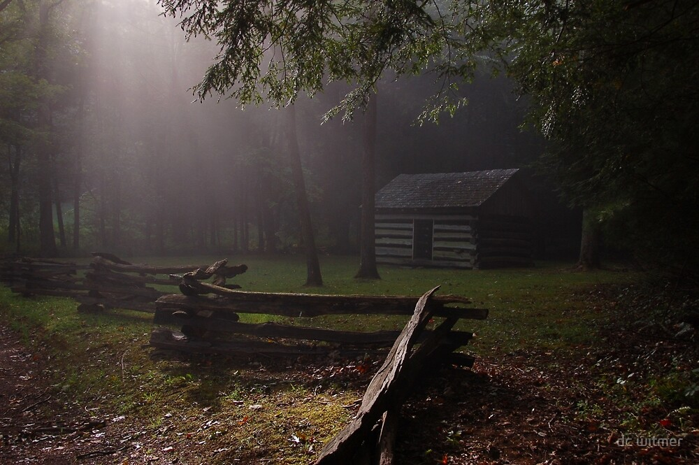 light on the fence by dc witmer