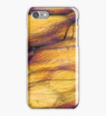 Nodules of Polystyrene under  the microscope iPhone Case/Skin