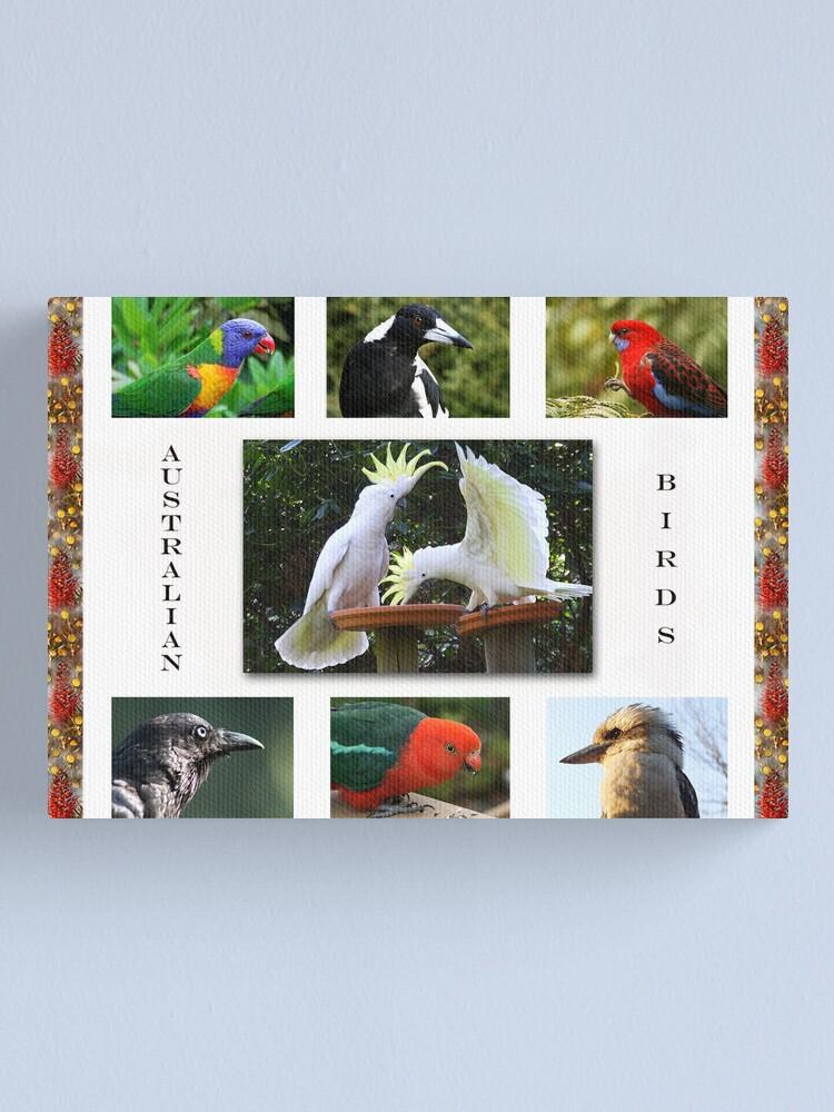 Alternate view of Birds in my garden Canvas Print