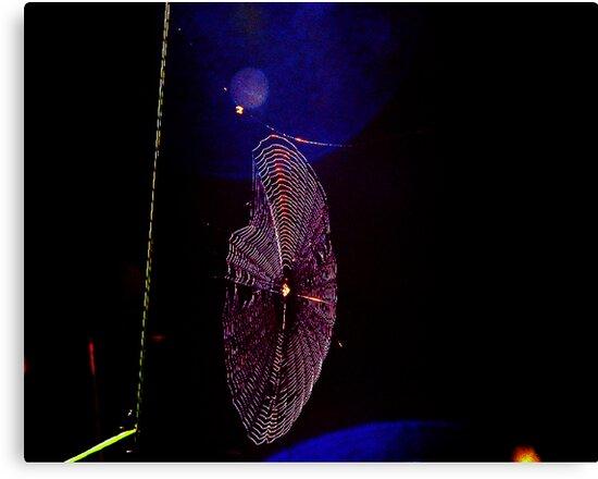 Dark Light Web by Elias