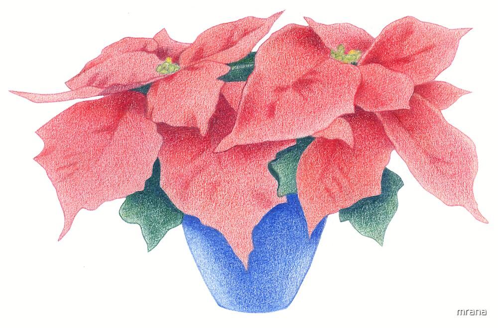 Poinsettia by Mariana Musa