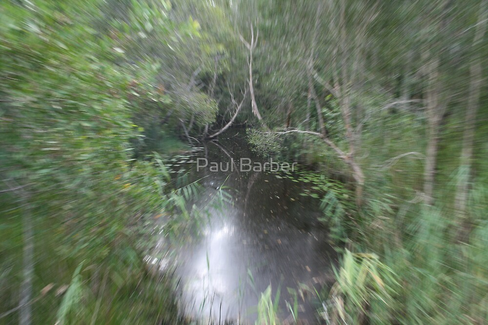 Sureal Creek by Paul Barber