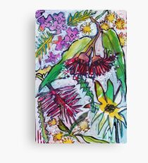 Australian Wildflowers - Kerry Beazley Canvas Print