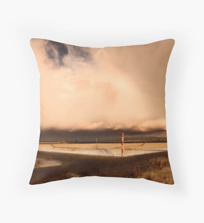 Purification Plant Throw Pillow