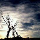 Lament by Craig Shillington