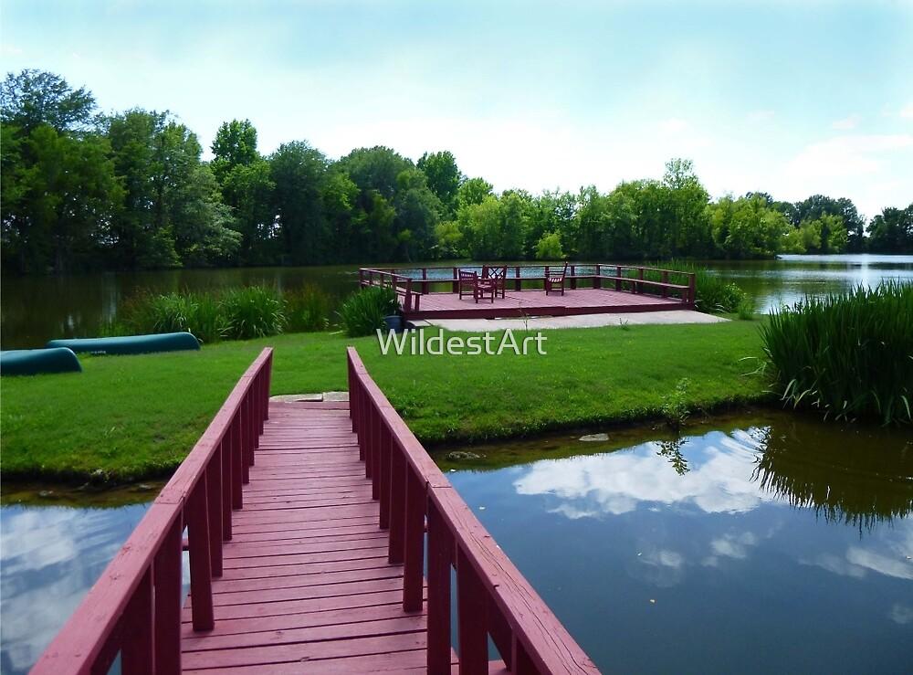 Tranquil Pond by WildestArt
