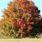 golf flag by bluejayro