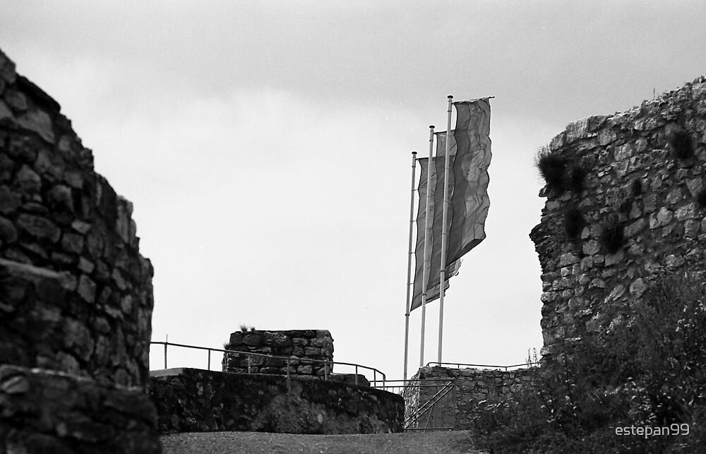 Flags by estepan99